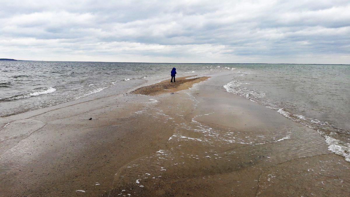 dzikie plaże