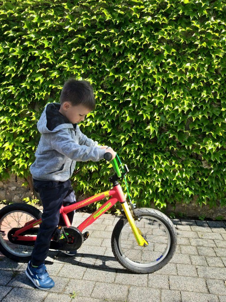 chłopiec siedzi na czerwonym rowerze. spogląda na ziemie, coś obserwuje. w tle ściana zieleni.