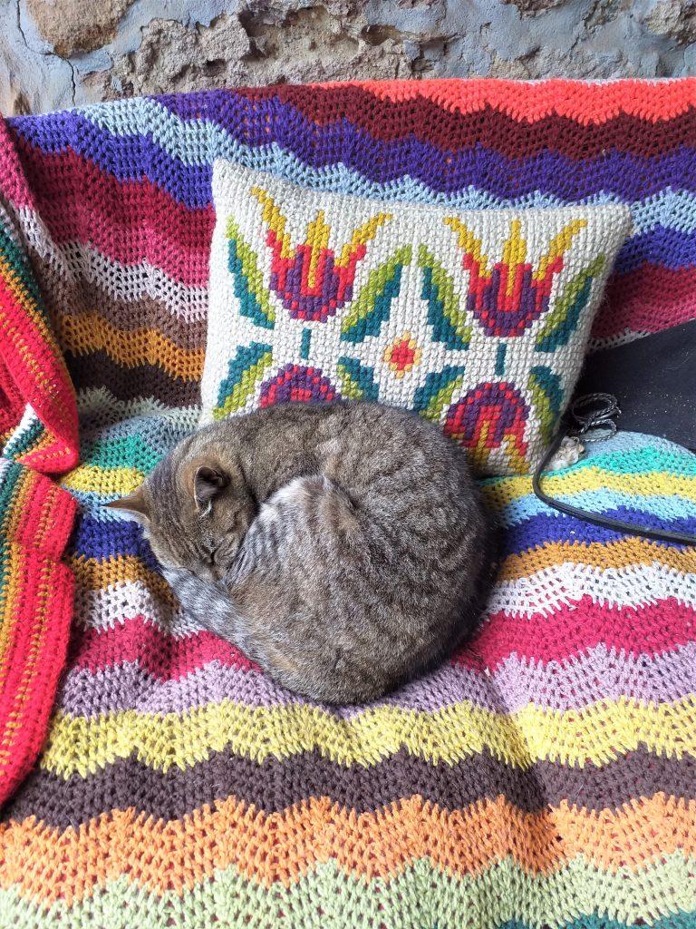 szary pręgowany kot, zwinięty w kłębek  śpi na fotelu, na fotelu kolorowa narzuta w paski i haftowana poduszka w kwiaty
